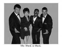 photo-picture-image-rat-pack-celebrity-look-alike-impersonator-ThePackisBack200