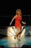 photo-picture-image-Tina-Turner-celebrity-look-alike-lookalike-impersonator-19d